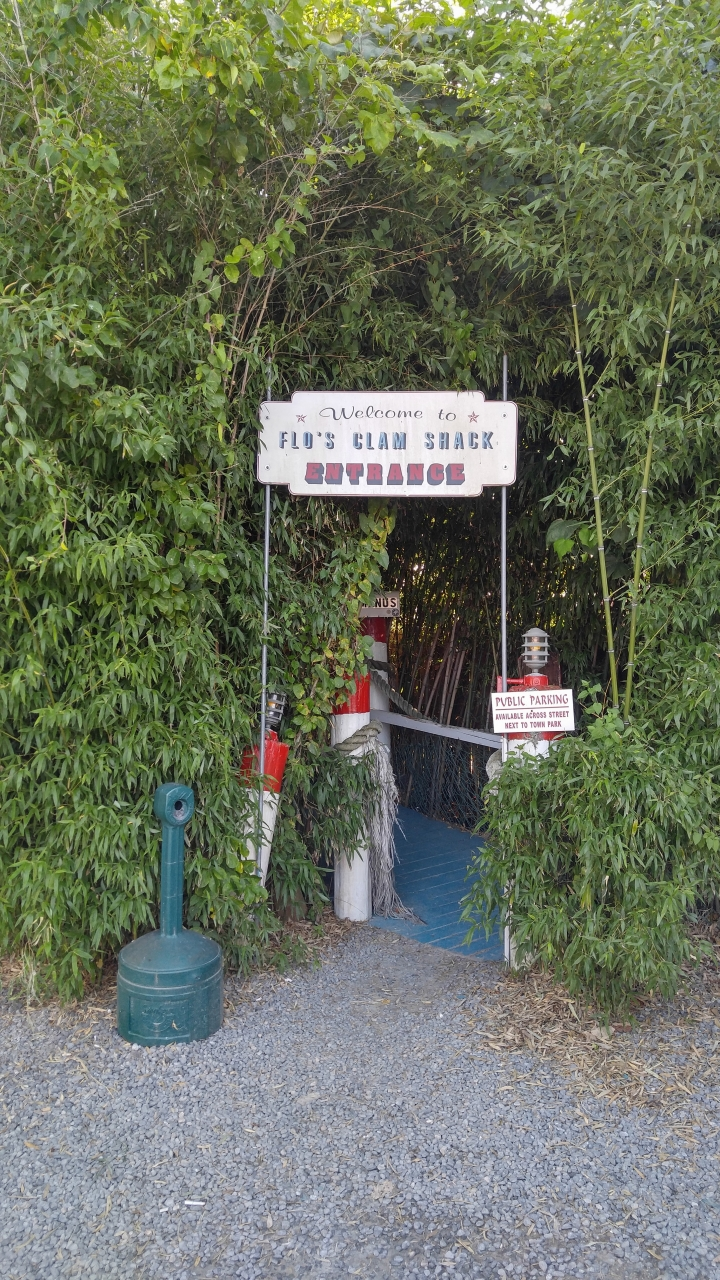 Poodle Adventure Day 1 2018-07-10 - back entrance to Flo's,   i have a video too  seems like i'm in the Caribbean