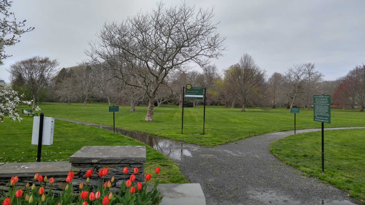 Poodle Adventure Day 1 2018-07-10 - rovenski dog park   its right there at the ocean end of Bellevue where the mansions are